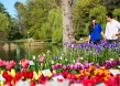 Explore your capital during Floriade
