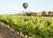 More Wins for South Australian Wines